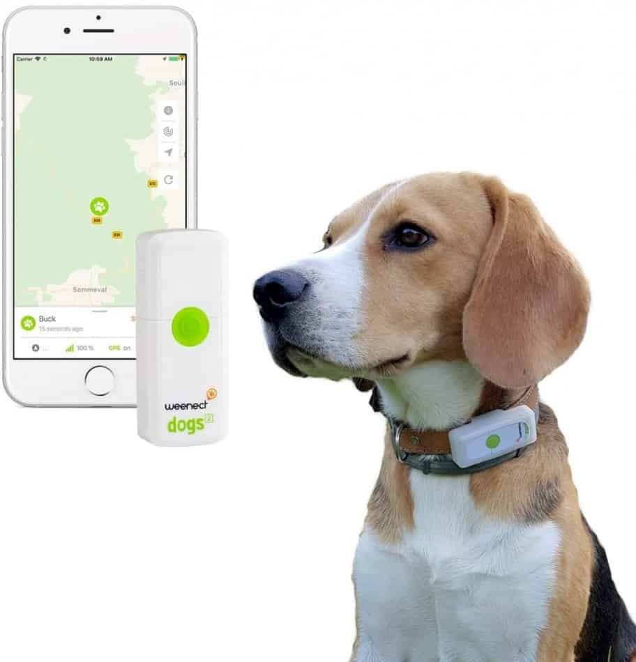 What is the Best GPS System for Tracking Your Dog? | 5 GPS Dog Trackers 15