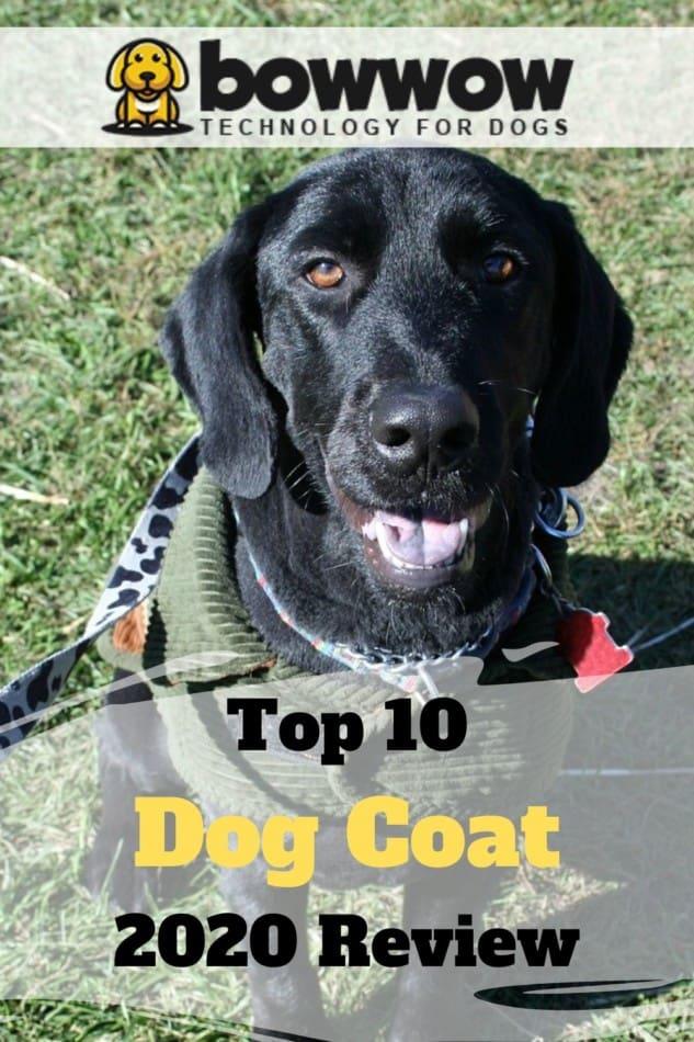 top 10 dog coats