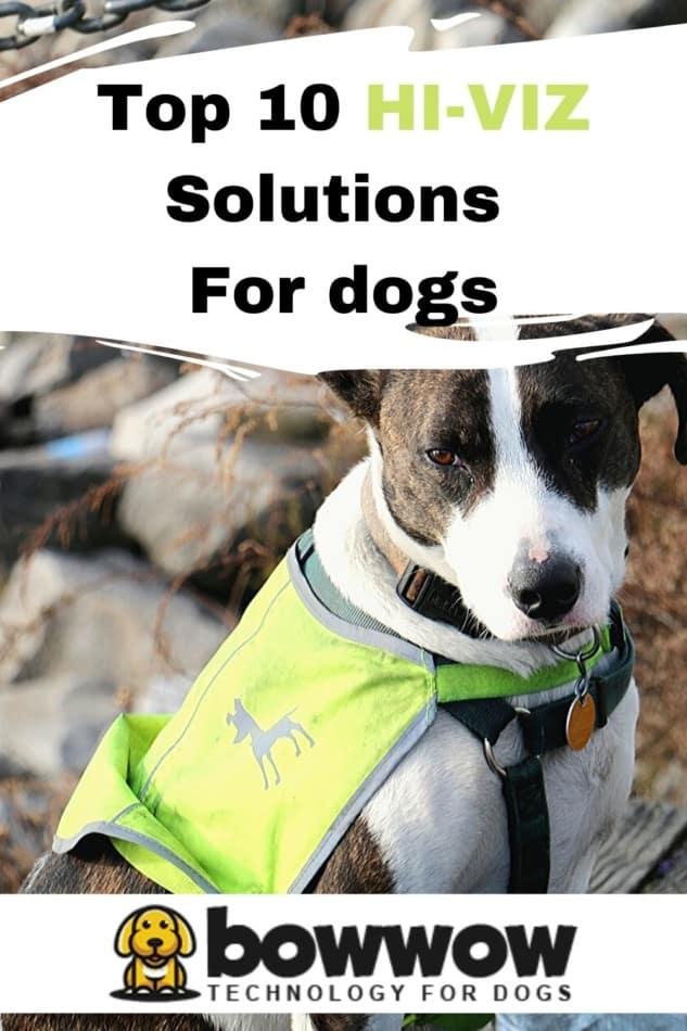 top 10 hi viz solutions for dogs