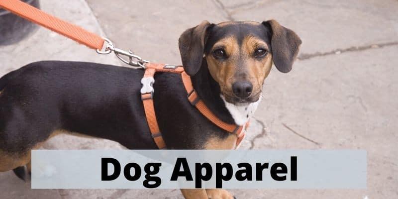 dog leads & apparel