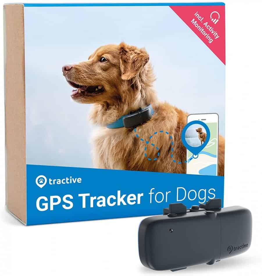 Best Fitness Trackers for Dogs | 4 Activity Monitors Reviewed 4